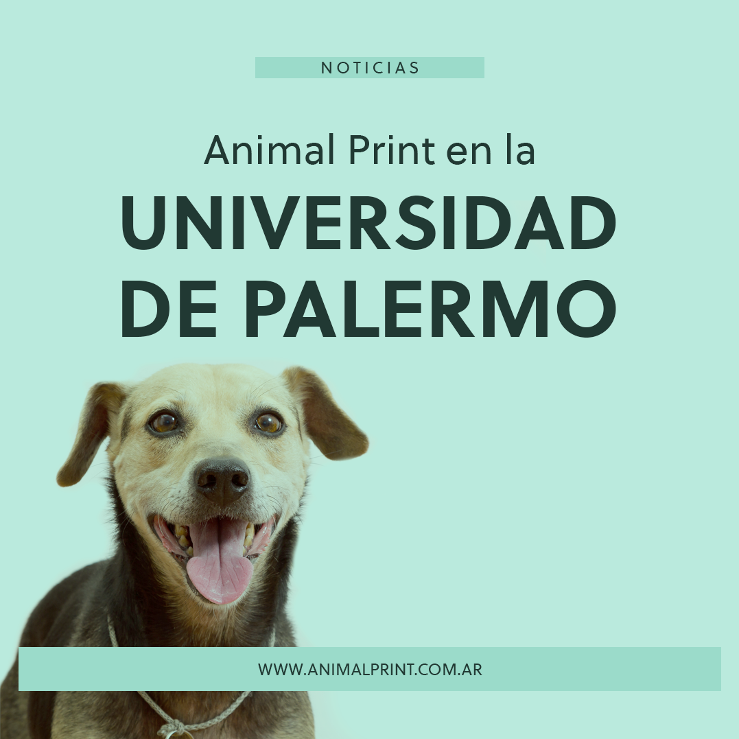 animal-print-en-la-universidad-de-palermo_1