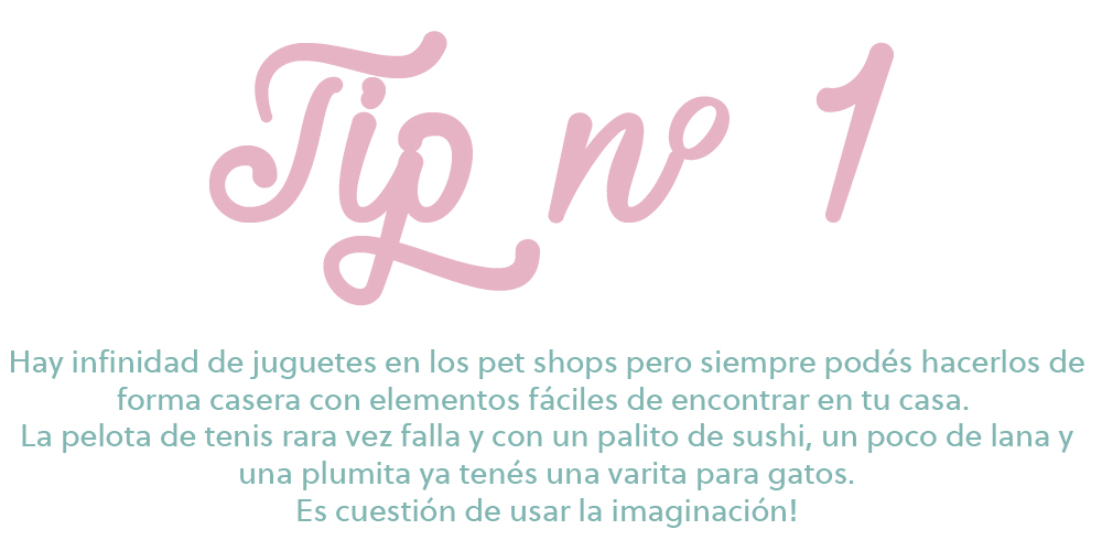 tips 1-01-01